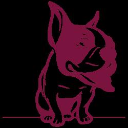 Vinilo perro bulldog mascota