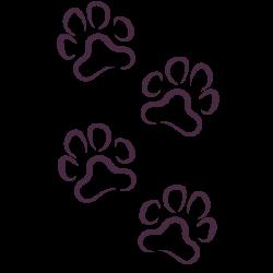 Vinilo huellas de perro