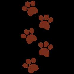 Vinilo huellas de perro cachorro